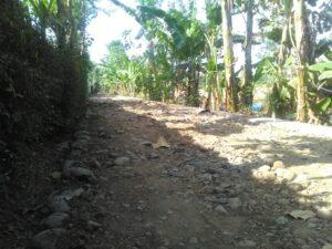 Lokasi : Lapangan Desa Kandang