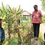 DPU SDA Prov Jateng, Tinjau Longsor Sungai Comal